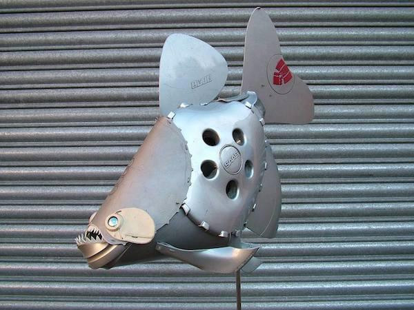 hubcaps fish