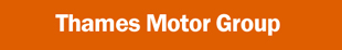 Thames Motor Group Ltd Fiat logo